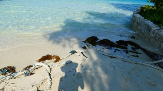 Pramuka Island (19)
