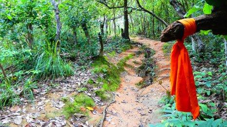 Blog Chiang Mai82