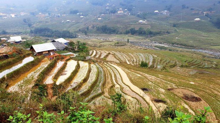 blog vietnam65