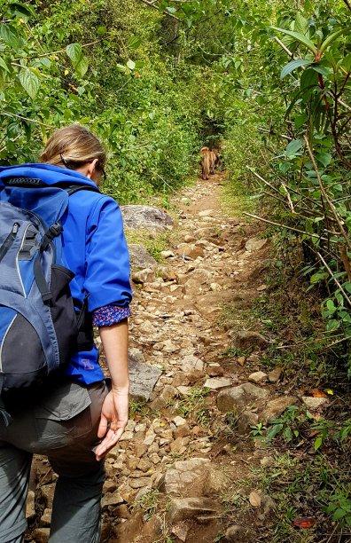 Vietnam blog deel III 96