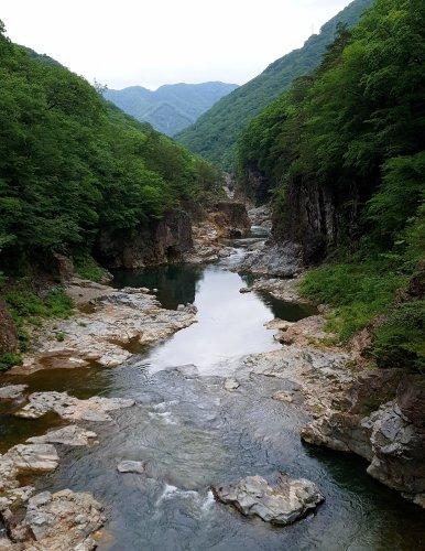 blog japan53